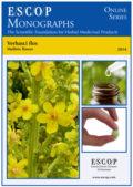 Verbasci flos (Mullein Flower)