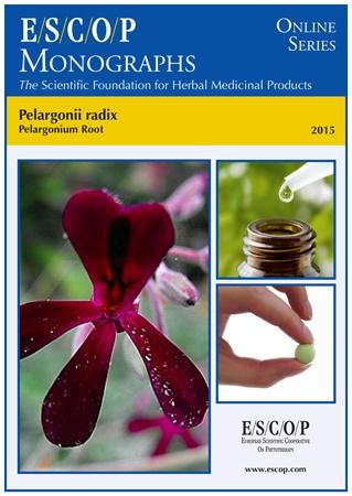 Pelargonium-1
