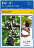 Ribis nigri folium (Black Currant Leaf)